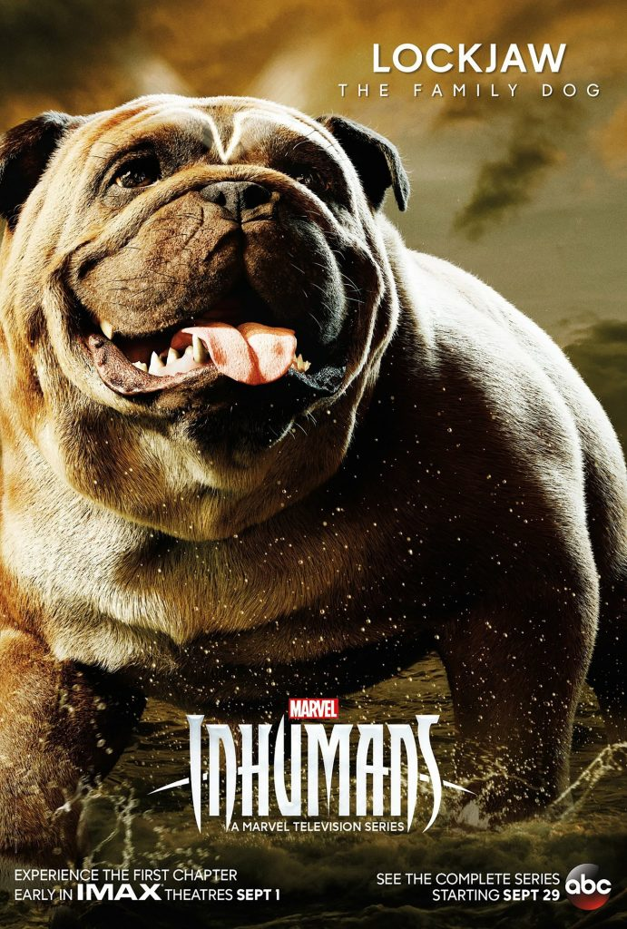 A giant bulldog with its tongue out on a poster for the Marvel TV show The Inhumans.